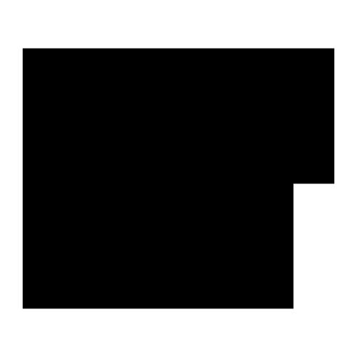 pollinis-abeille-noire