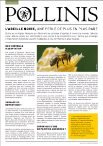 fiche thematique abeille noire