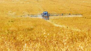 agriculture-pixabay89168_1920-pesticides-SDHI
