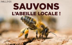 sauvons-labeille-locale