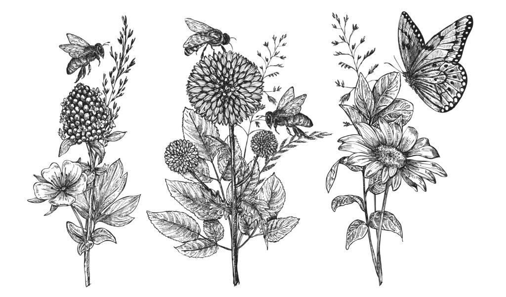 illustration2-1-aspect-ratio-340x200