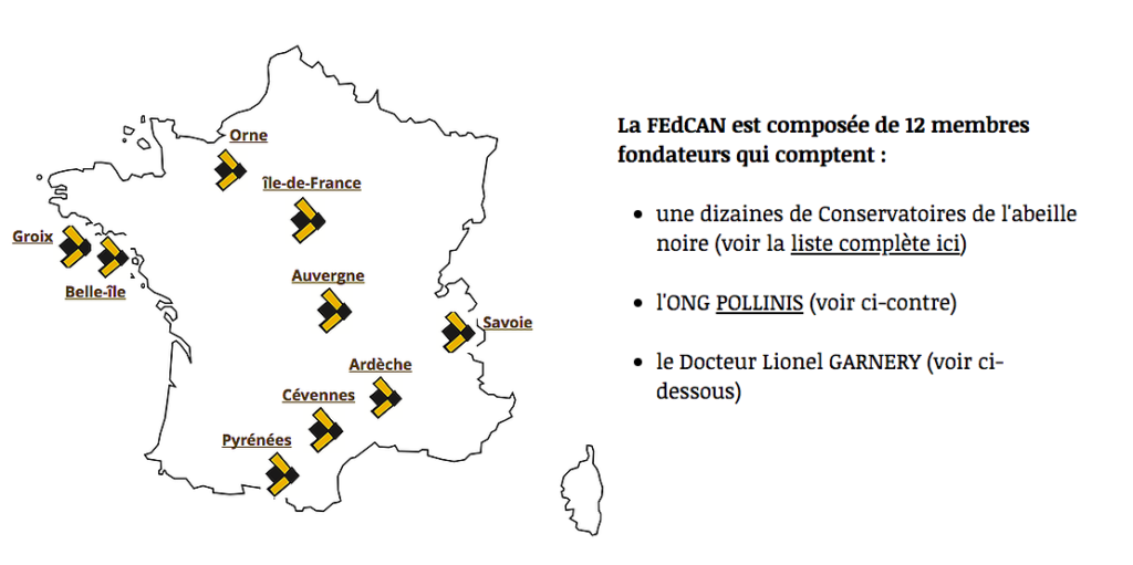 FEDCAN-infographie