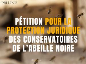 publication_facebook_campagne_juridique_sans_bouton