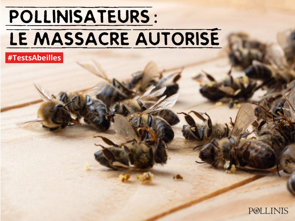 tests-abeilles-peetition-européenne
