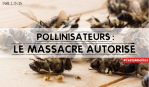 petition-europeenne_tests_abeilles