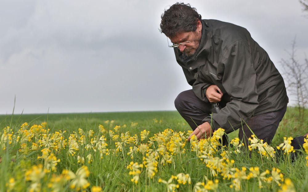 faune-ou-flore-depuis-1994-vincent-bretagnolle-et-son-equipe-du-cnrs-de-chize-menent-un-etat-des-lieux-de-lecosysteme-des-plaines-agricoles