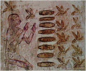 Beekeepingaegypt (c) John -Andrew Ginsbury