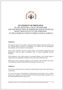 statement of principle ue-2019endef