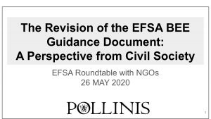 Ilustration- Pollinis-The-Revision-of-the-EFSA-BEE-Guidance Document_ A-Perspective-from-Civil-Society