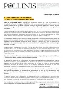 CP plan pollinisateurs
