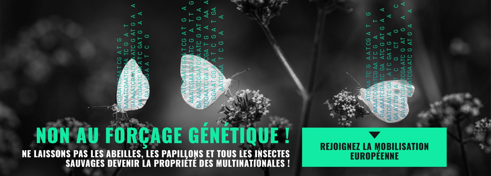 stop-forcage-genetique-petition-europe
