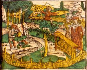 Apiculture en Alsace Medicinarius 1509 - Das Buch der Gesundheit ... de M. Ficinus. - Strasbourg- J. Grueninger, 1509. Wikimedia Commons