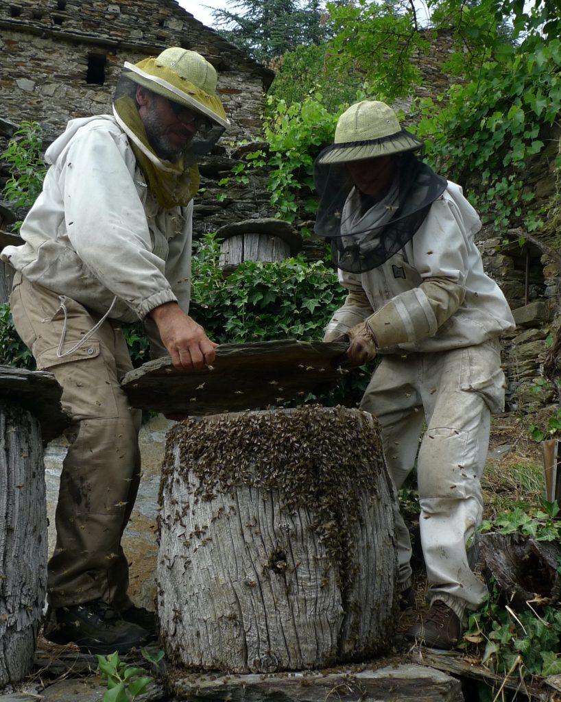 VAN Yves-Elie et Chantal avec une ruche