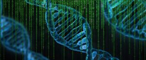 genetique (c) Pete Linforth Pixabay copie
