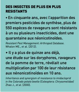 encadre resistance